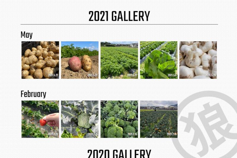 農作物ギャラリー